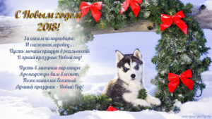 Pair of Siberian husky puppies in Holiday wreath outside in snow bank Colorado Winter --- Image by © Alaska Stock/Corbis